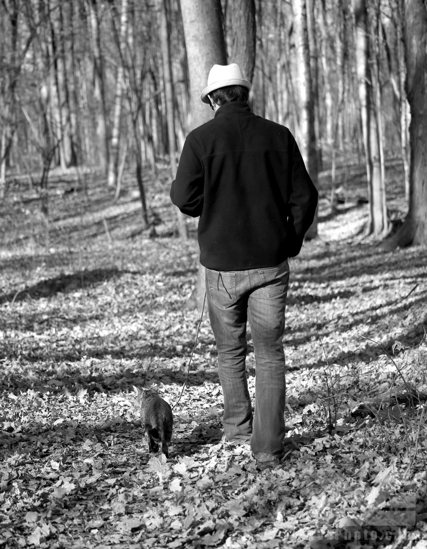 For it seems that a cat, at the right time, can be a good walking companion too :)
